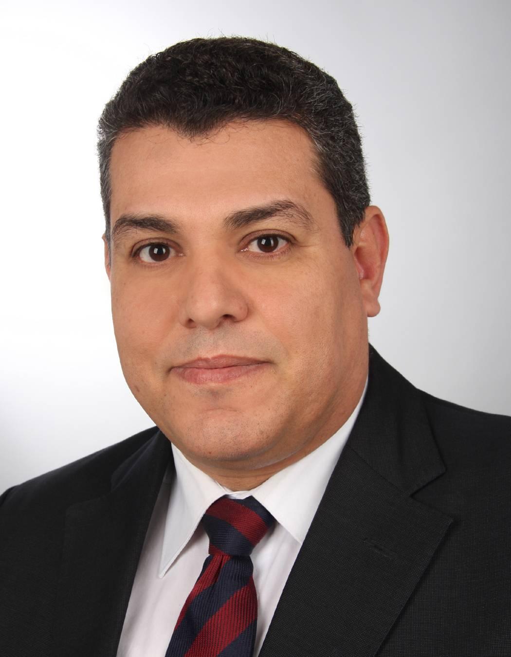 Dr. habil. Ezzeldin Metwalli Ali